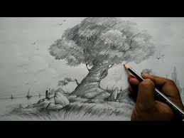 how to draw a shaded tree with landscape for beginners youtube