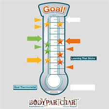 bodypartchart goal thermometer anatomical charts