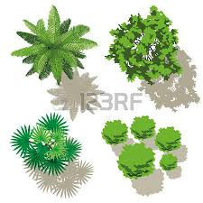 trees top view design for map royalty free cliparts vectors and