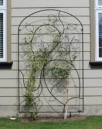 Ideas For Metal Garden Trellis Design Afbeeldingen Resultaat Voor Http Www Wingnutdesigns