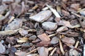Garden Mulch Types - the 7 best mulches for winter in charlotte nc lawnstarter