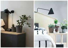 plante verte dans une chambre à coucher plantes dépolluantes à entretien facile purifiez l air en