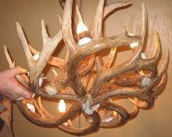 round whitetail deer antler chandelier