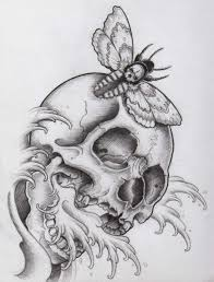 best 25 skull sketch ideas on pinterest skull illustration