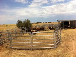 cattle fence panels ideas peiranos fences special today