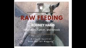raw feeder to raw feeder rodney habib vegetables canine cancer