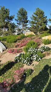 Botanical Gardens Images by 111 Best Denver Botanical Gardens Images On Pinterest Botanical