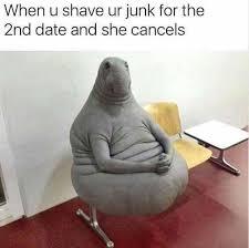 The Meme - read the meme funny memes daily lol pics