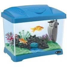 vasche acquario vasche e acquari per pesci mio petshop