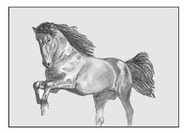 horse draw free pictures on pixabay