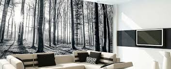 beautify your homes with different types of wall murals tcg
