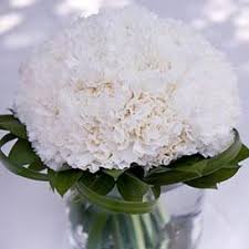 Carnation Flower Ball Centerpiece by Flower Balls For Wedding Centerpieces Beautiful Carnation