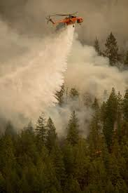 Wildfire Carson Wa by 563 Best Fire Images On Pinterest Wildland Firefighter