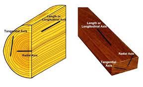 kaminholzregal fã r wohnzimmer radius wooden tree tree fort platform radius design wooden tree