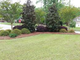 Landscaping Ideas For Backyards by 25 Best Corner Landscaping Ideas Ideas On Pinterest Corner