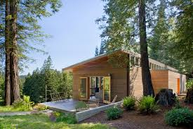 modern open plan wood house in the middle of a forest