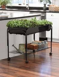 diy herbs garden is always a great idea for your kitchen diy