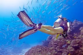 Padi Dive Tables by Dive Tables How To Understand Dive Tables Easy To Follow Steps