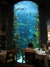 chart house aquarium restaurant in las vegas fuzzy navels