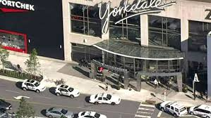 seriously injured after stabbing inside yorkdale mall ctv