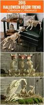 Decorating Your House For Halloween by Best 25 Halloween Skeleton Decorations Ideas On Pinterest