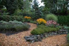 low maintenance garden tips ideas and plants for easy gardening