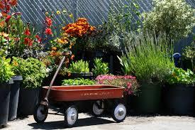 100 making a small garden beautiful cfefbfbfdfa in how to
