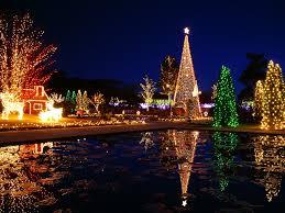 beautiful christmas trees christmas lights decoration