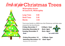 real christmas trees for sale fresh cut christmas trees 2012 1st willoughby scouts