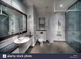 Hotel Bathroom Mirrors by Modern Hotel Bathroom Toilet Disabled White Basin Shower Taps
