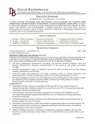 Examples Of Executive Resumes by Executive Resume Formats And Examples Samples Of Resumes