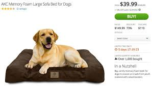 Sofa Bed For Dogs by Akc Memory Foam Large Sofa Bed For Dogs Keep The Tail Wagging