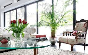 how your home can boost your mood