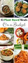 tips for shifting to a plant based diet for meat lovers plant