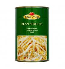 cuisiner les germes de soja germes de soja pousses haricots mungo 20g