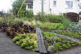 front yard vegetable garden ideas home design ideas