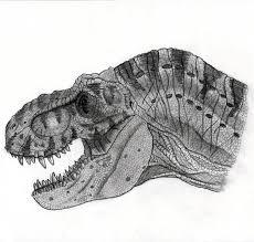 jurassic park tyrannosaurus by yankeetrex on deviantart