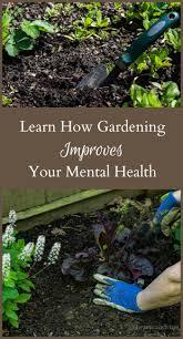 1113 best diy herb garden images on pinterest garden ideas
