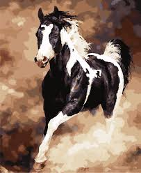 arabian horse paintings promotion shop for promotional arabian diy digital painting black white horse pictures for room wall art home decor animal oil painting by number hand paint 40x50cm