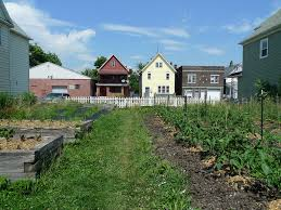 stop the leakage how food centered urban design solves economic