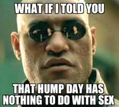 Dirty Hump Day Memes - hump day memes