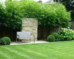 backyard garden landscaping with bamboo inspiration bamboo garden