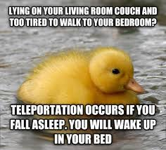 Advice Mallard Meme Generator - visiting my mum for the weekend and walk into a house full of