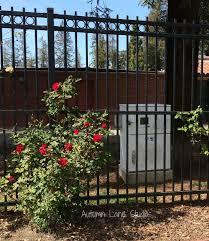 Home Expo Design San Jose Autumn Lane Studios San Jose Art Box In The Rose Garden