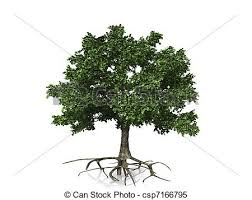 tree with roots stock illustrations search clipart drawings