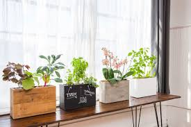 indoor windowsill planter indoor windowsill planter box 2 plants just place windowsill