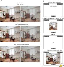 differential effects of visual uncertainty and contextual guidance