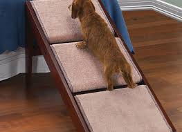Elevated Dog Bed With Stairs Best Dog Stairs For Bed Southbaynorton Interior Home Dog Beds And