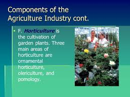 nature of the agriculture horticulture industry interest approach