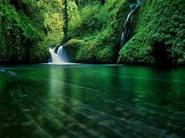 beautiful green water surrounded by the rich green landscape